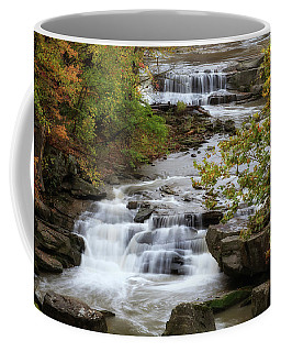 Coffee Mug featuring the photograph Autumn At The Falls by Dale Kincaid