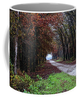 Autumn Backroad Coffee Mug