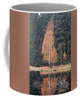 Autumn Birch By The Lake Coffee Mug by Michal Boubin