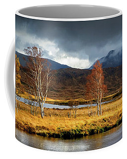 Autumn Birches Coffee Mug