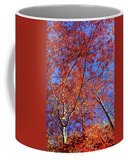 Coffee Mug featuring the photograph Autumn Blaze by Karen Wiles