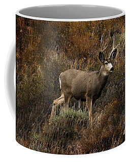 Autumn Buck Coffee Mug