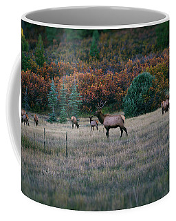Autumn Bull Elk Coffee Mug