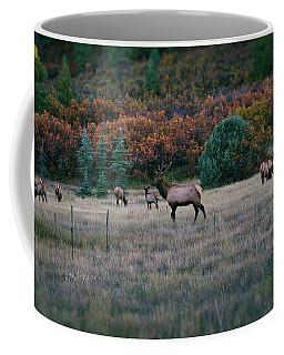 Coffee Mug featuring the photograph Autumn Bull Elk by Jason Coward