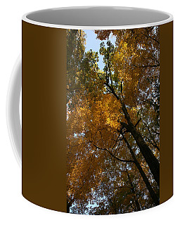 Coffee Mug featuring the photograph Autumn Canopy by Shari Jardina