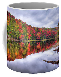 Coffee Mug featuring the photograph Autumn Color At The Pond by David Patterson