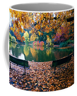 Autumn Color Trees And Fallen Leaves Coffee Mug