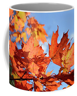 Coffee Mug featuring the photograph Autumn Colors 2 by Angie Tirado