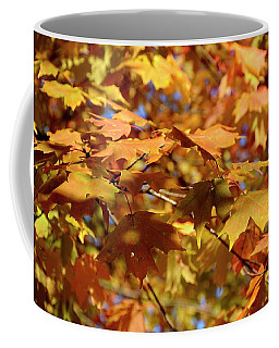 Coffee Mug featuring the photograph Autumn Colors 3  by Angie Tirado
