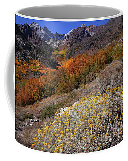 Autumn Colors At Mcgee Creek Canyon In The Eastern Sierras Coffee Mug