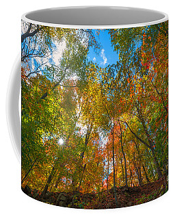 Autumn Colors  Coffee Mug by Michael Ver Sprill