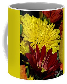 Coffee Mug featuring the photograph Autumn Colors by Patricia Griffin Brett
