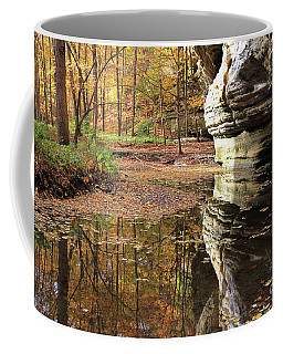 Autumn Comes To Illinois Canyon  Coffee Mug
