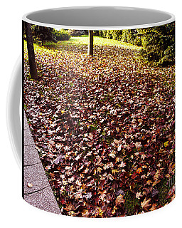 Coffee Mug featuring the photograph Autumn Cover by Jasna Dragun