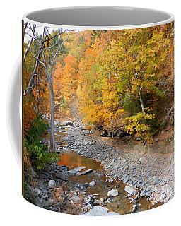 Autumn Creek  1 Coffee Mug