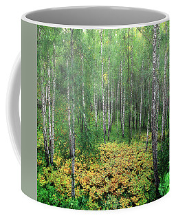 Coffee Mug featuring the photograph Autumn Day by Vladimir Kholostykh