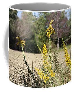 Autumn  Coffee Mug by Debra Forand