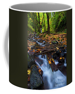 Coffee Mug featuring the photograph Autumn Downstream by Mike Dawson