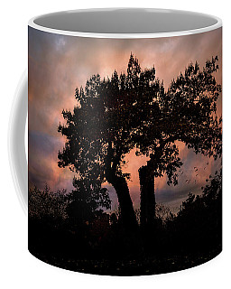 Coffee Mug featuring the photograph Autumn Evening Sunset Silhouette by Chris Lord