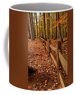 Coffee Mug featuring the photograph Autumn Fence by Angie Tirado