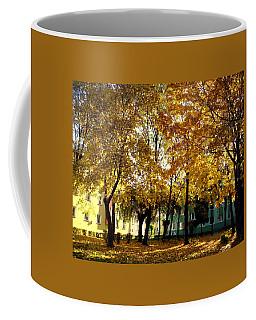 Autumn Festival Of Colors Coffee Mug