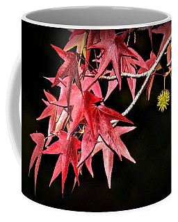 Coffee Mug featuring the photograph Autumn Fire by AJ Schibig