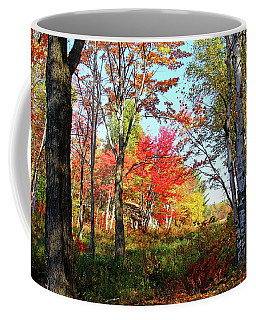 Coffee Mug featuring the photograph Autumn Forest by Debbie Oppermann