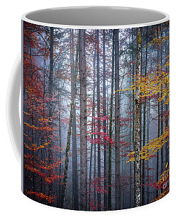 Coffee Mug featuring the photograph Autumn Forest In Fog by Elena Elisseeva