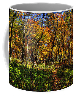 Autumn Forest Path At Johnson's Mound Coffee Mug
