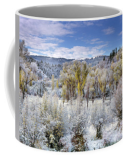 Coffee Mug featuring the photograph Autumn Frost And Texture by Leland D Howard
