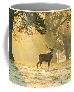 Coffee Mug featuring the photograph Autumn Frost by Scott Carruthers