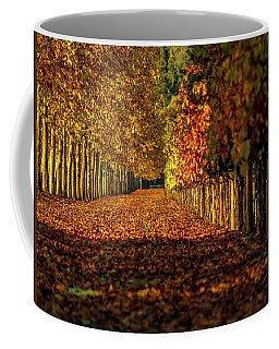 Coffee Mug featuring the pyrography Autumn In Napa Valley by Bill Gallagher