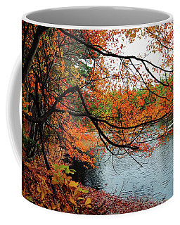 Coffee Mug featuring the photograph Autumn In New England by Lilia D