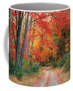 Autumn In New Jersey Coffee Mug