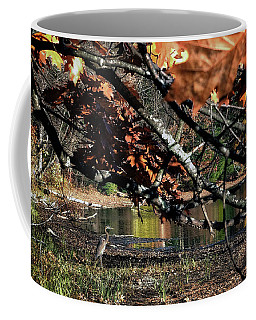 Autumn In The Berkshires Coffee Mug