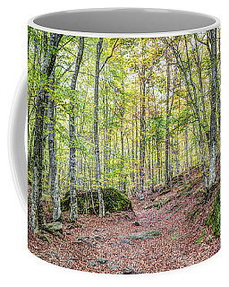 Autumn In The Enchanted Rocks Coffee Mug