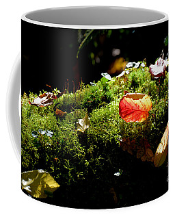 Autumn Jewels For A Mossy Log Coffee Mug