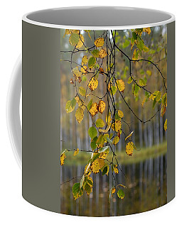 Autumn  Coffee Mug by Jouko Lehto