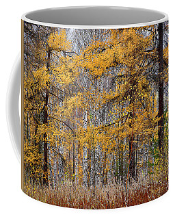 Coffee Mug featuring the photograph Autumn Landscape by Vladimir Kholostykh