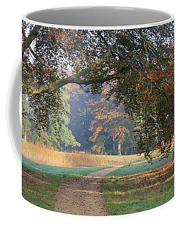 Autumn Landscape With Colored Trees In Park, Netherlands Coffee Mug