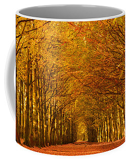 Autumn Lane In An Orange Forest Coffee Mug
