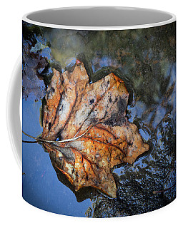 Coffee Mug featuring the photograph Autumn Leaf by Debra and Dave Vanderlaan