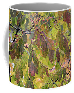 Coffee Mug featuring the photograph Autumn Leaves by Doris Potter