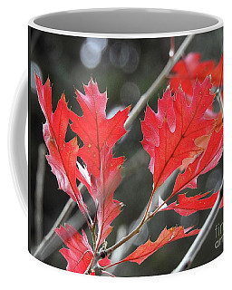 Coffee Mug featuring the photograph Autumn Leaves by Peggy Hughes