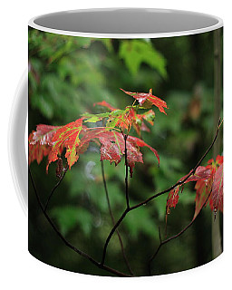 Coffee Mug featuring the photograph Autumn Leaves by Randy Bayne
