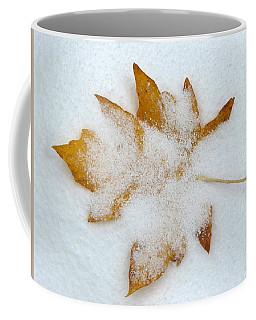 Autumn Letting Go To Winter Coffee Mug