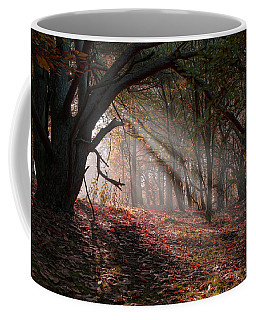 Autumn Light  Coffee Mug