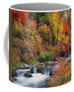 Autumn Magic Coffee Mug