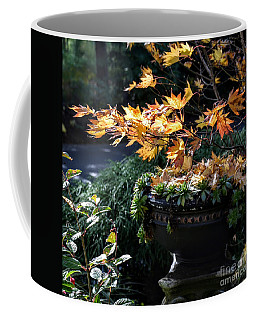 Autumn Maple And Succulents Coffee Mug