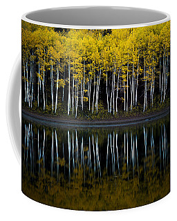 Coffee Mug featuring the photograph Autumn Mirror by Dustin  LeFevre